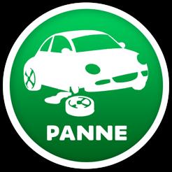 P1a1n1n1e1